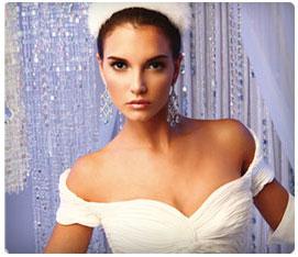 Weddings in Houston Winter Bride