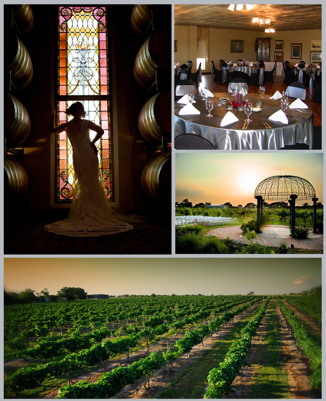 Texas Vineyard Wedding