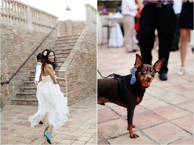 bride, groom and puppy