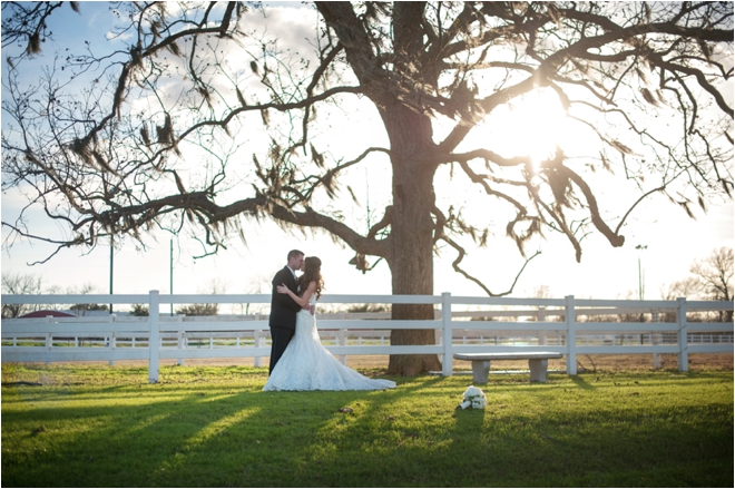 Navy and Ivory Briscoe Manor Wedding by Lindsay Elizabeth Photography