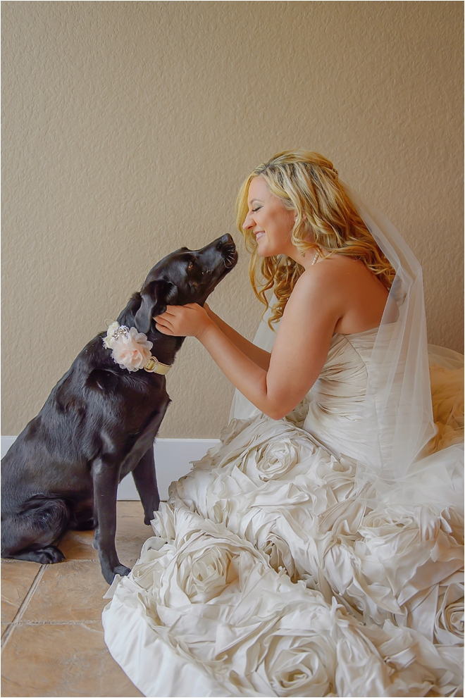 Sanctuary at Water Oak Wedding with Crystals, Cigars, Whiskey and Canine Friends