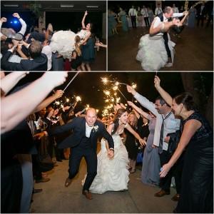 Champagne, Lavender, Sage & Blue Houston Wedding