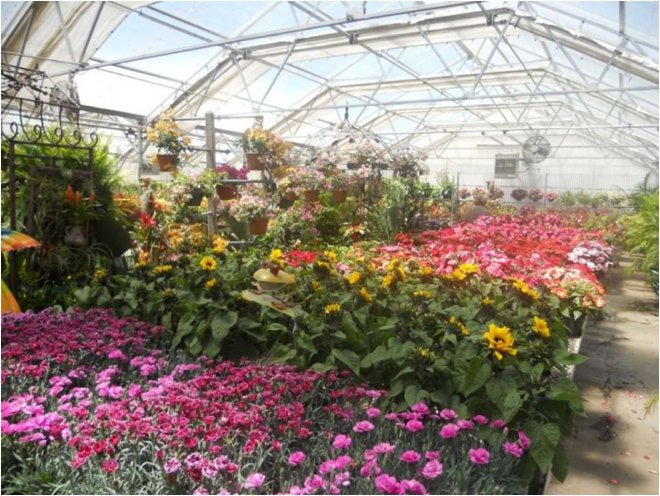 Brookwood-Community-Greenhouse