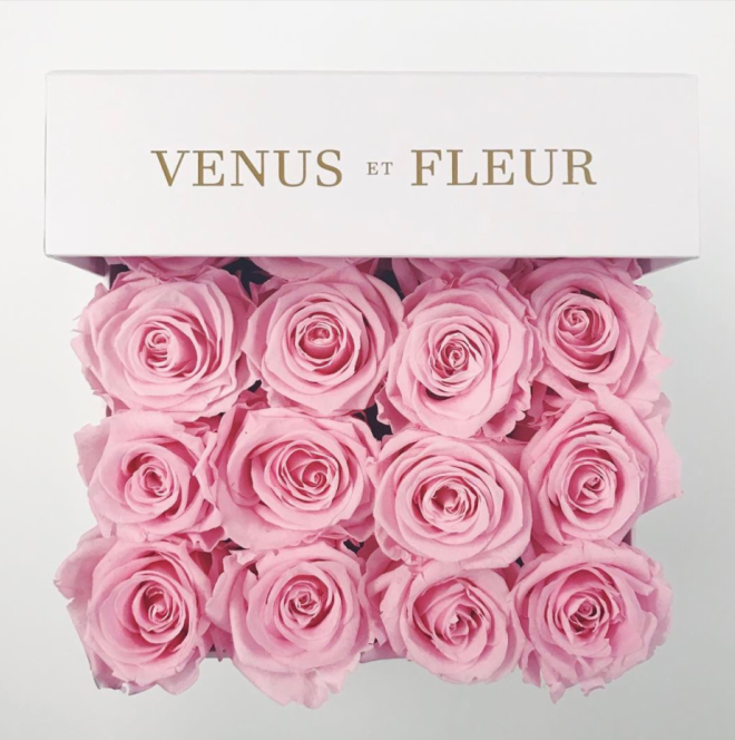 Venus Et Fleur Pink Small Square Box