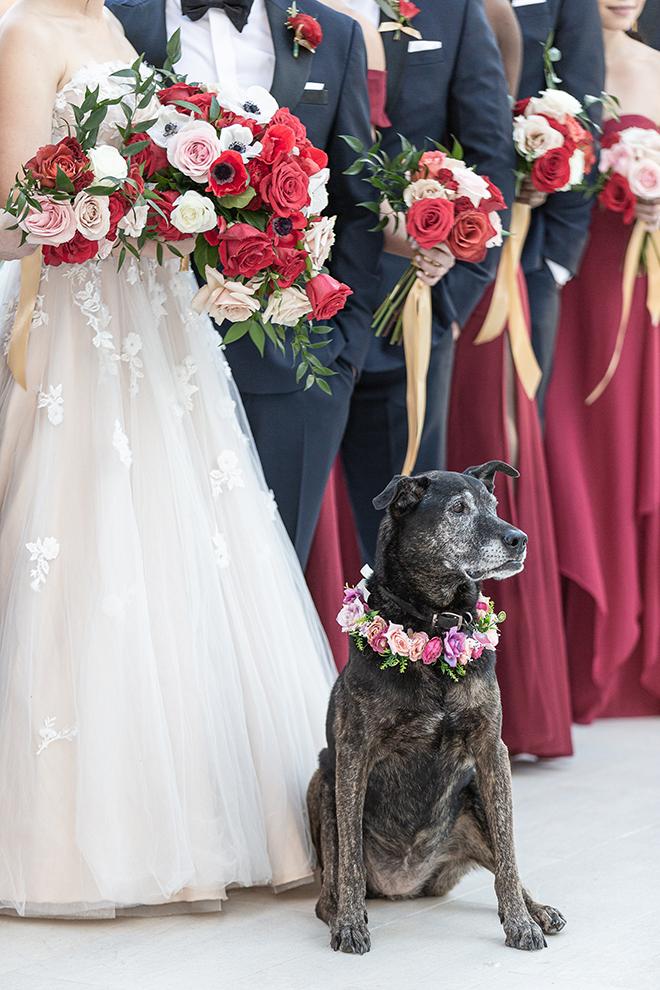 romantic valentine's day wedding westin houston medical center pets