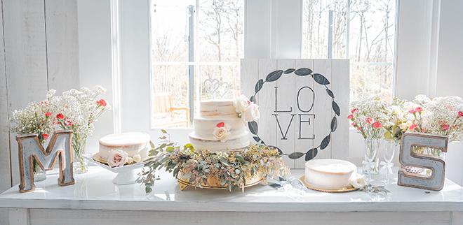 dusty rose, navy, blue, diy wedding, wedding photography, j. ernest media, wedding cake, diy