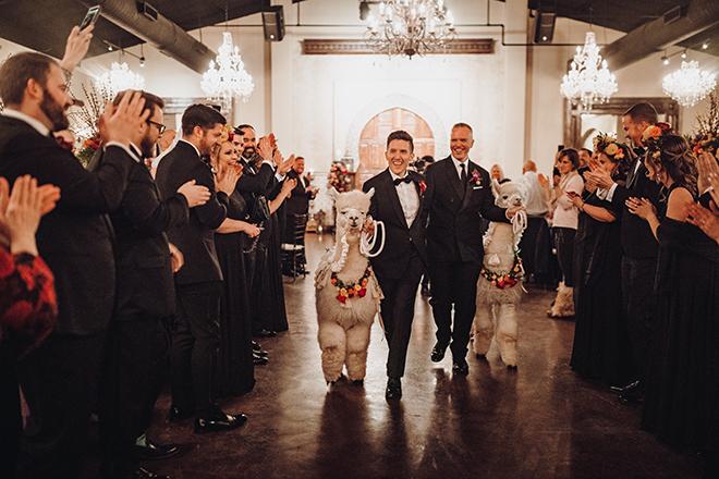 reception entrance, alpacas, madera estates, gay wedding, same sex wedding, lgbt, indoor reception