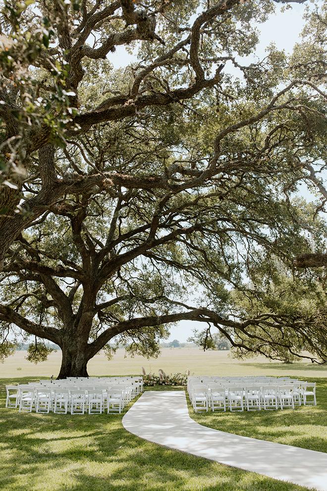 modern, boho, wedding, blush, white, black, champagne, outdoor ceremony, alfresco, simple, beautiful, tree