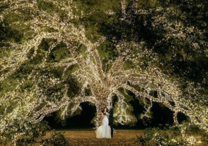 Beautiful Enchanted Wedding At The Houstonian Hotel, Club & Spa