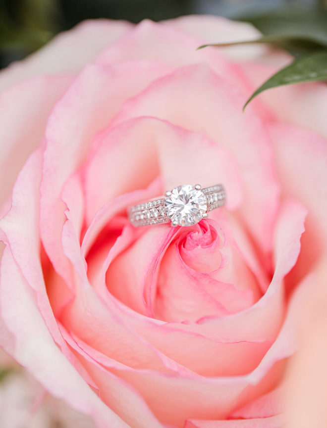 Pink garden rose with a diamond engagement ring in the center.