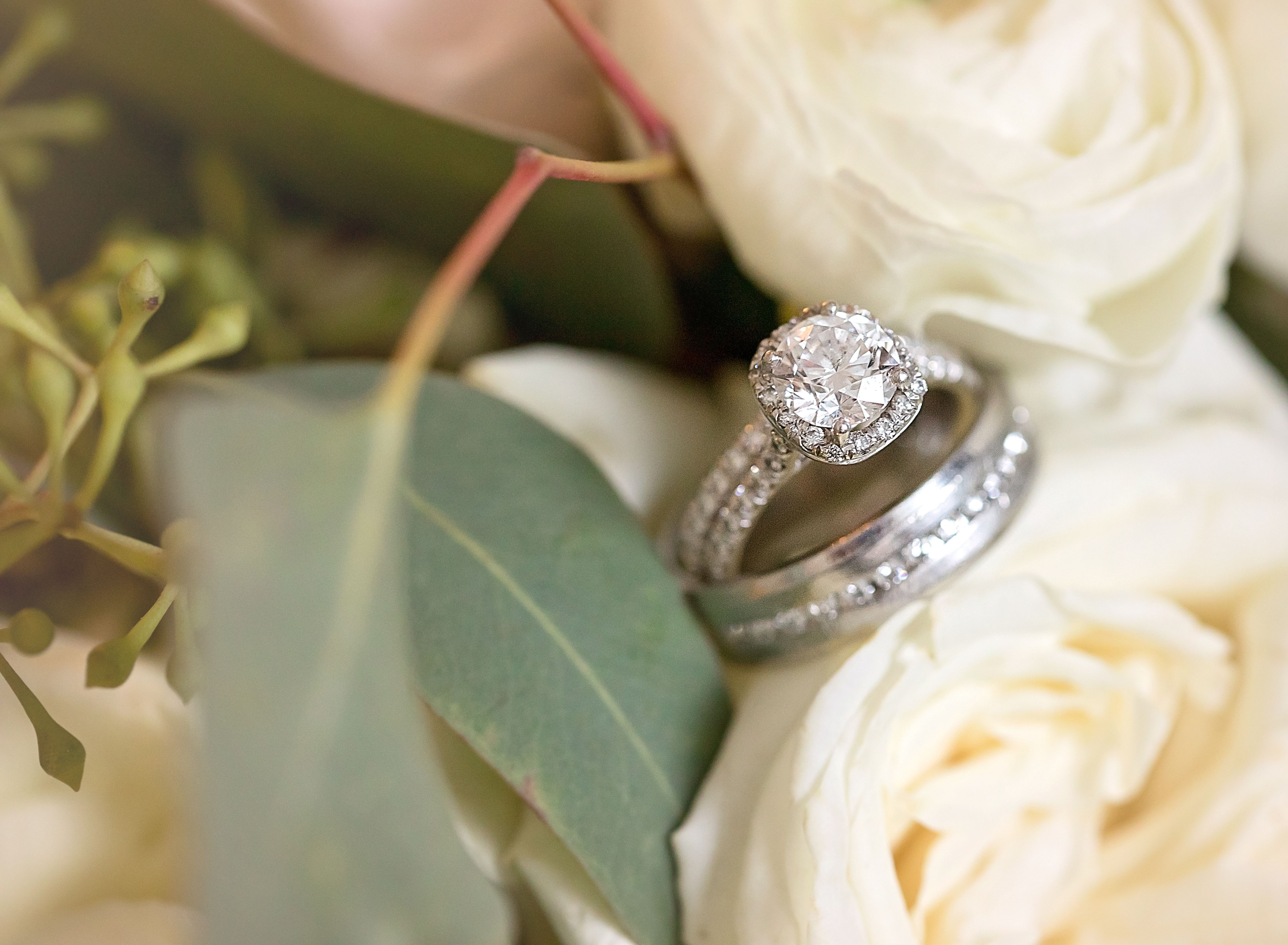 A wedding ring with a round brilliant diamond surrounded by smaller crystals is nestled in between white roses.