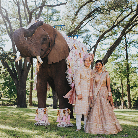 Indian Weddings and South Asian Weddings Houston