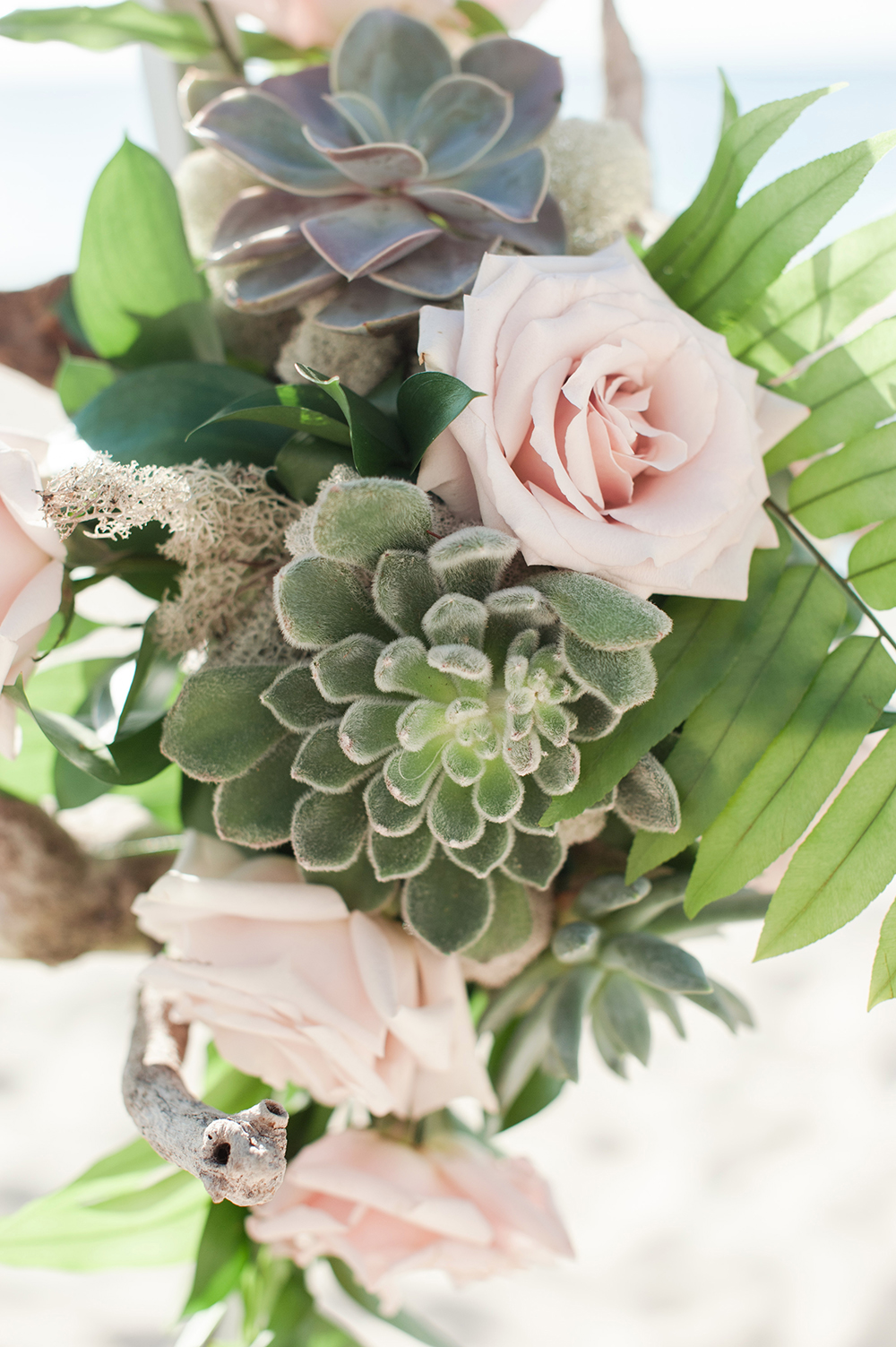 succulent bouquet - beach wedding decor