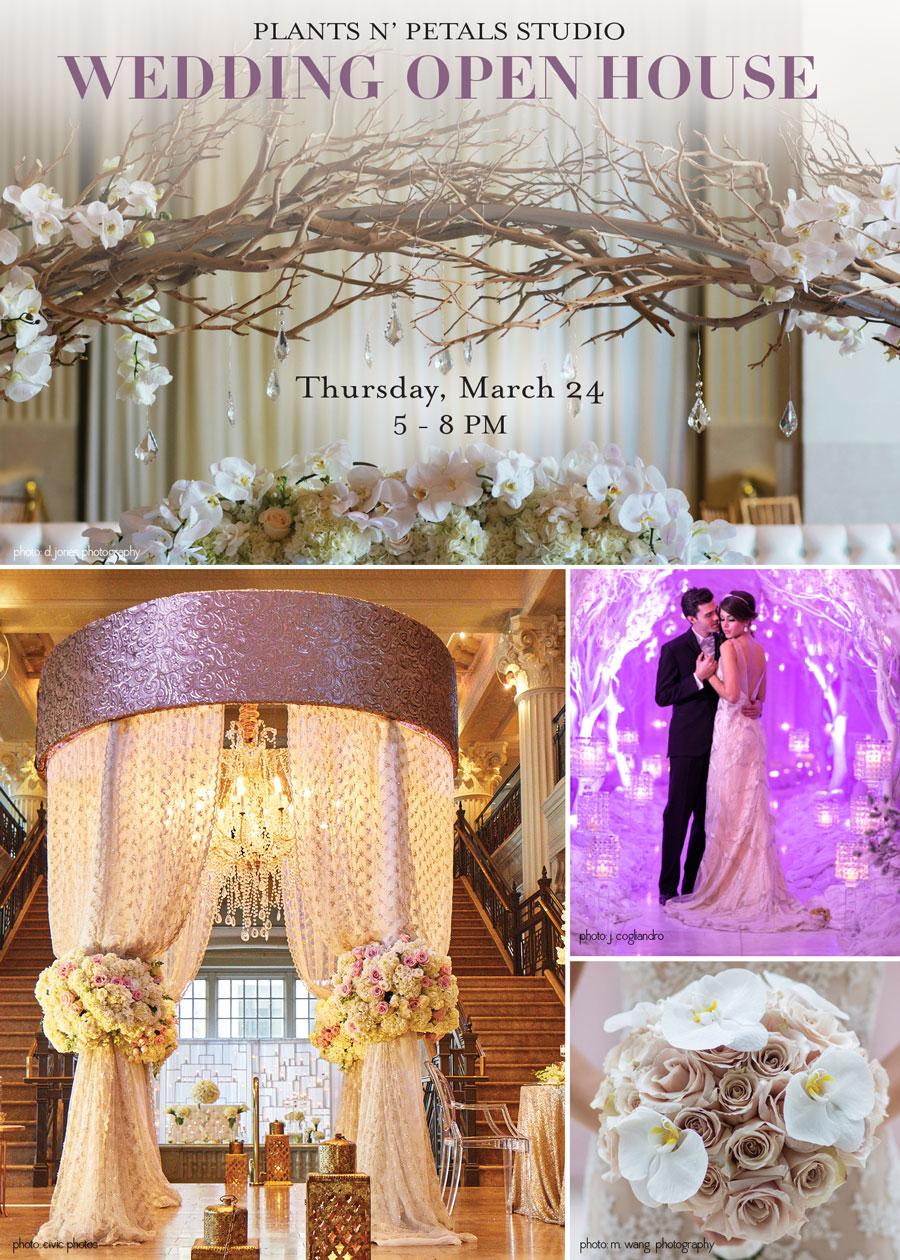 Plants N Petals Design Studio Open House Weddings In Houston
