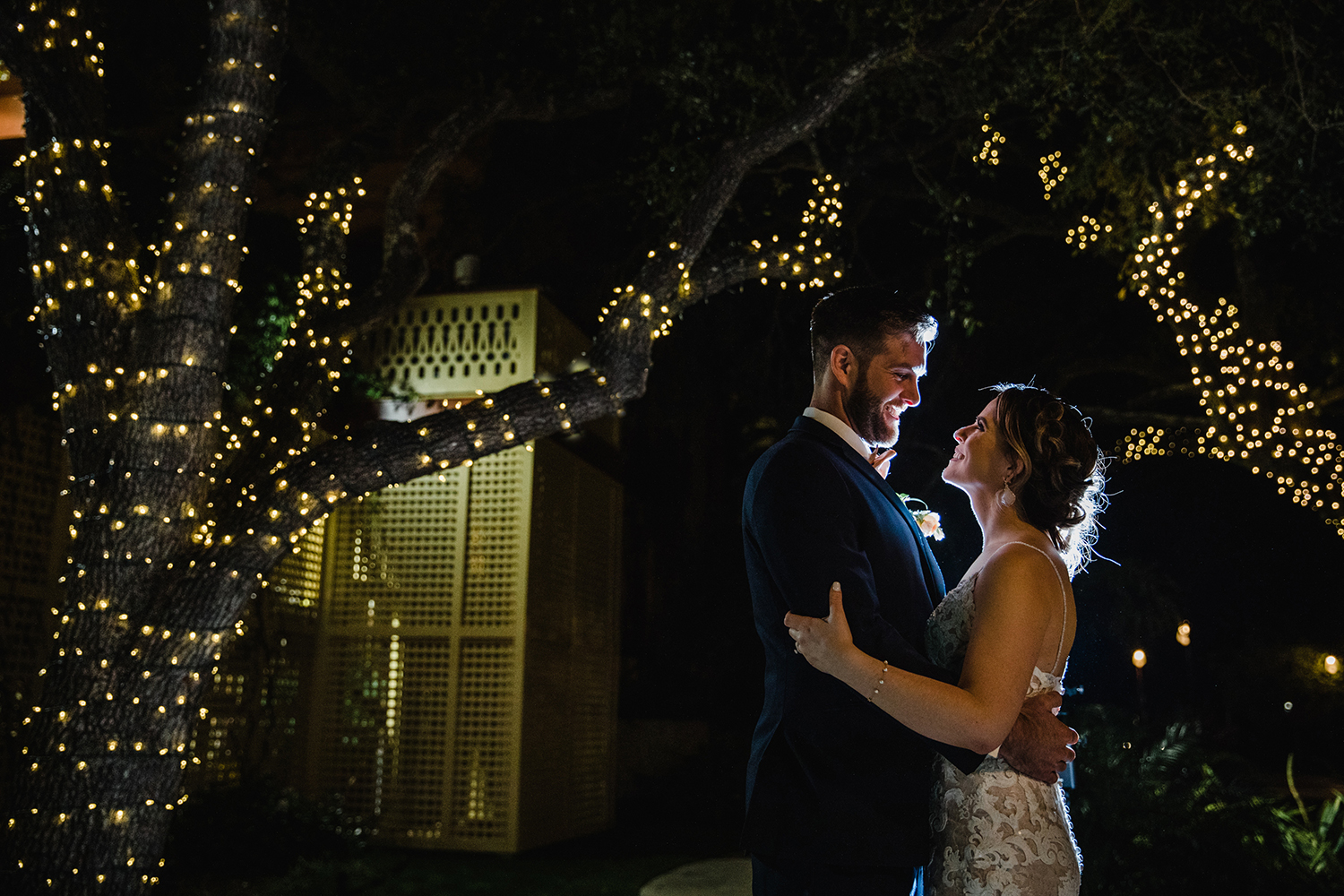 string light trees - night wedding - dramatic photography