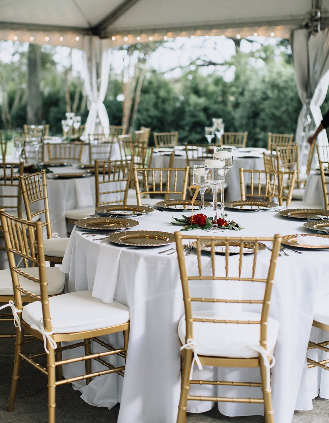 texas, real wedding, outdoor reception, garden wedding, gold chairs, tent