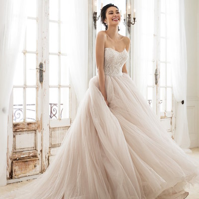 Parvani vida bridal sophia tolli trunk show weddings for Wedding dress alterations houston