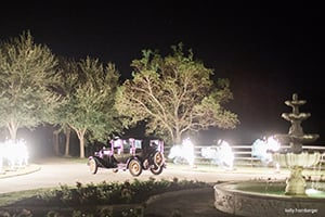 Houston Weddings - Limousines, Charter Busses, Luxury Cars, Classic Car Rentals